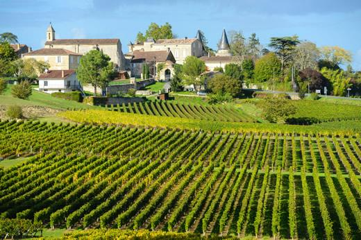 Bordeaux Wine Tour: Vineyards outside of a small village in the Bordeaux region of France.