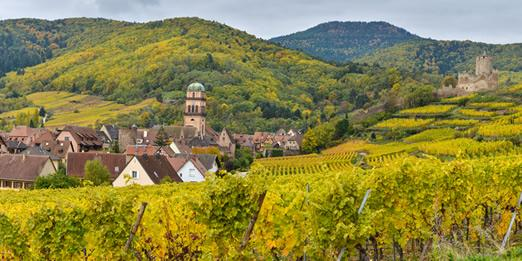 Alsace Three Day Biking Trip:  See the village of Kaysersberg, France from the surrounding hills.