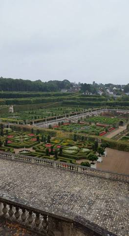 A view of the gardens from Villandry in the Loire Valley.