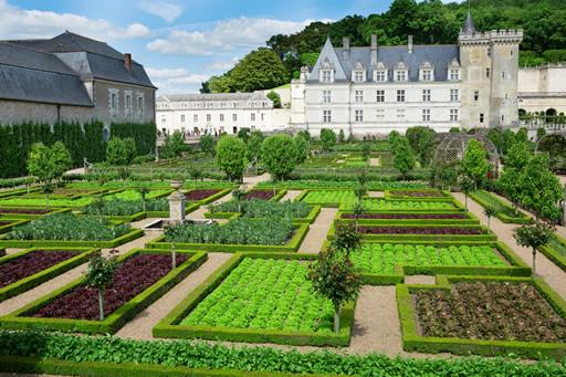 The gardens on the grounds of Villandry, France.