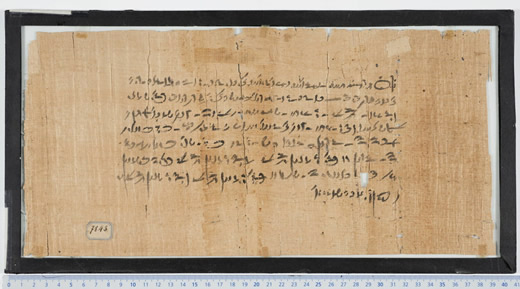 An ancient Sanskrit papyrus.  One of many housed in the Louvre.