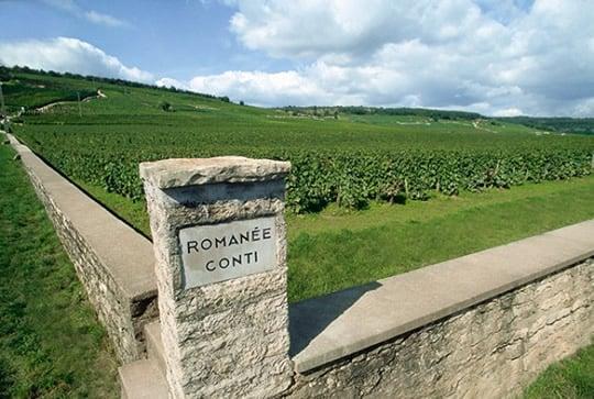See the famous Romanée-Conti vineyard