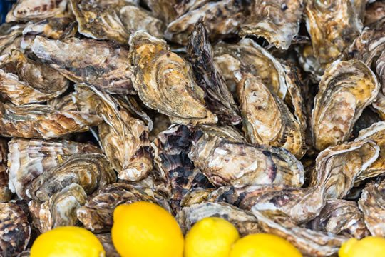 Fresh oysters and lemons in Brittany.